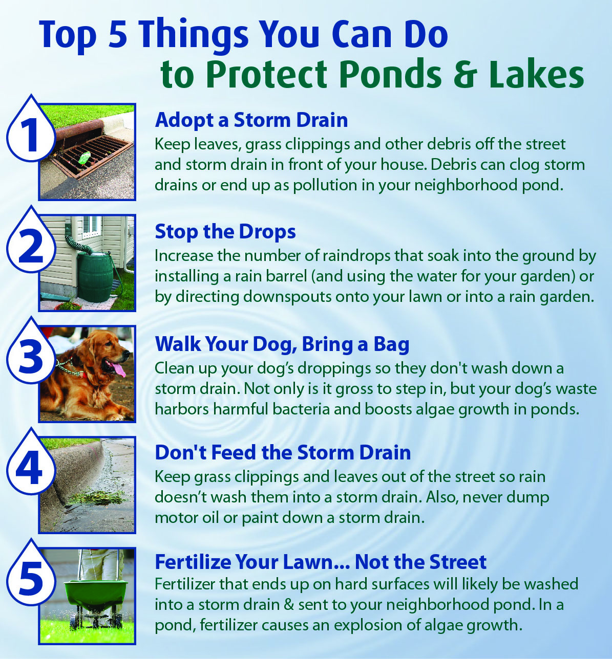 Top 5 Things for Lakes Ponds
