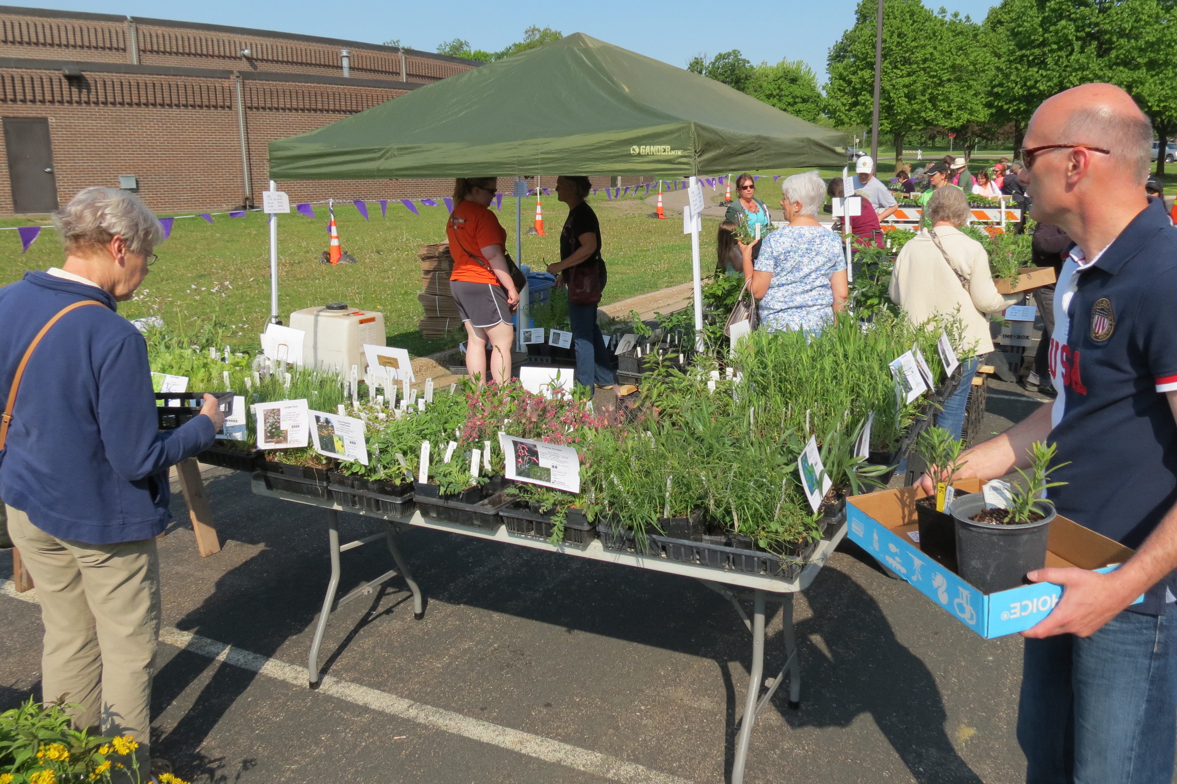 Native Plant Market Display and Attendees